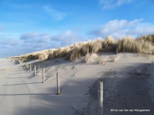 Ockenburgh duinen